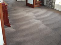 Carpet Dry Cleaning - Micks Carpet Cleaning