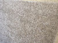 Steam Carpet Cleaning - Micks Carpet Cleaning Ballarat