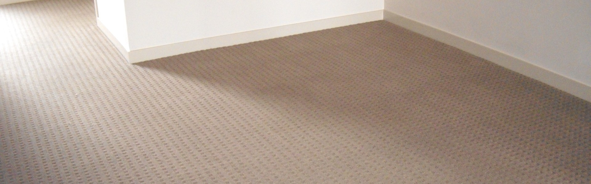 Household Carpet Steam Cleaning